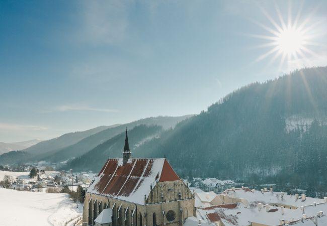 Neuberger Münster im Winter