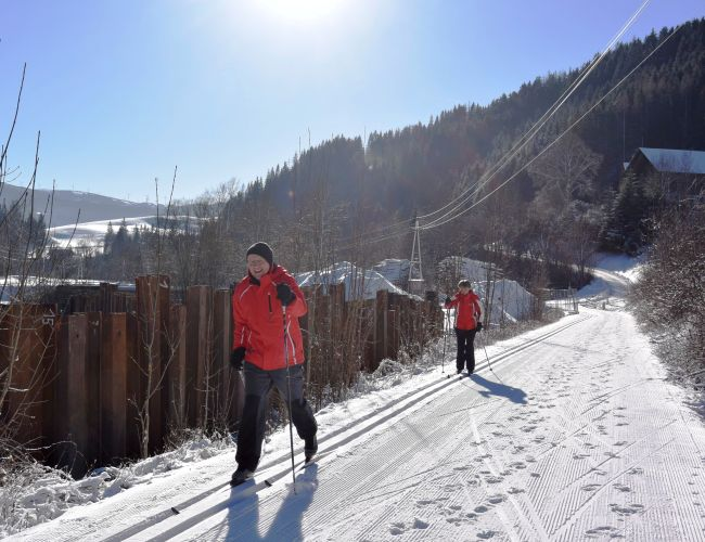 Langlaufen im Naturpark Mürzer Oberland