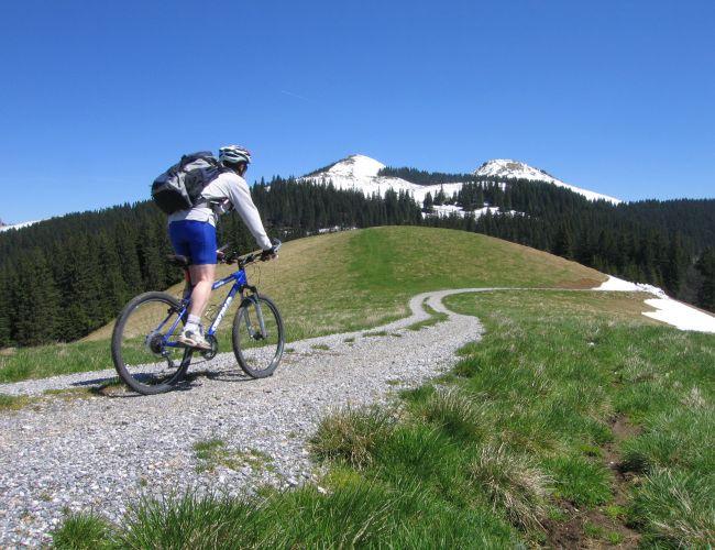 Mountainbiken im Naturpark Mürzer Oberland