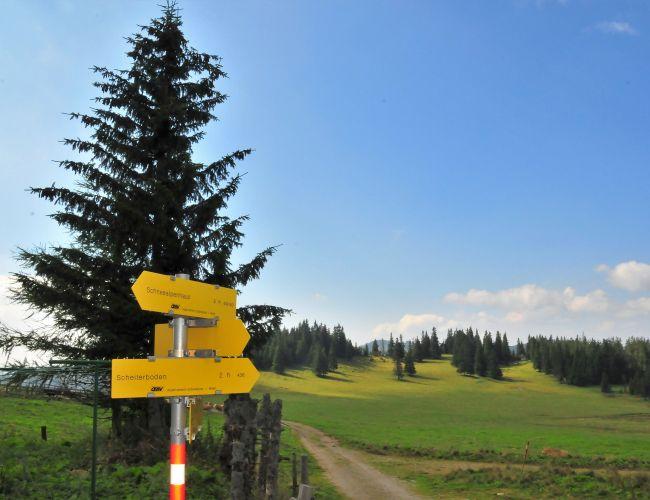 Wanderungen im Naturpark Mürzer Oberland