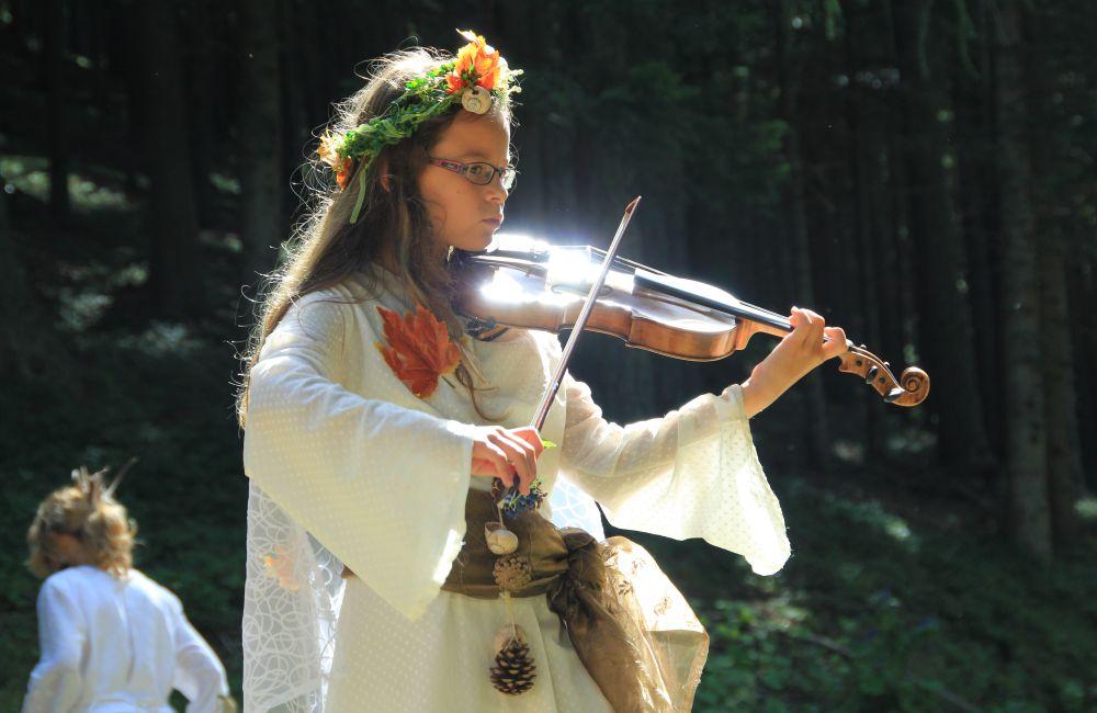 Geigen 2011 (c) Nixxipixx.com