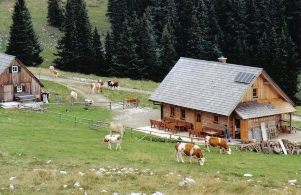 Lachalm - Halterhütte