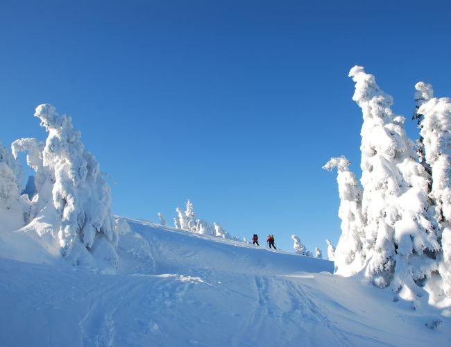 Skitour auf die Schneealm