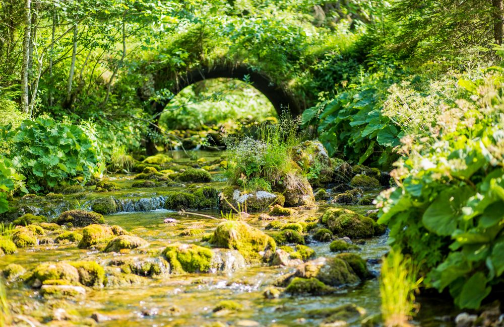 12 Naturpark Mürzer Oberland (c) Nixxipixx.com