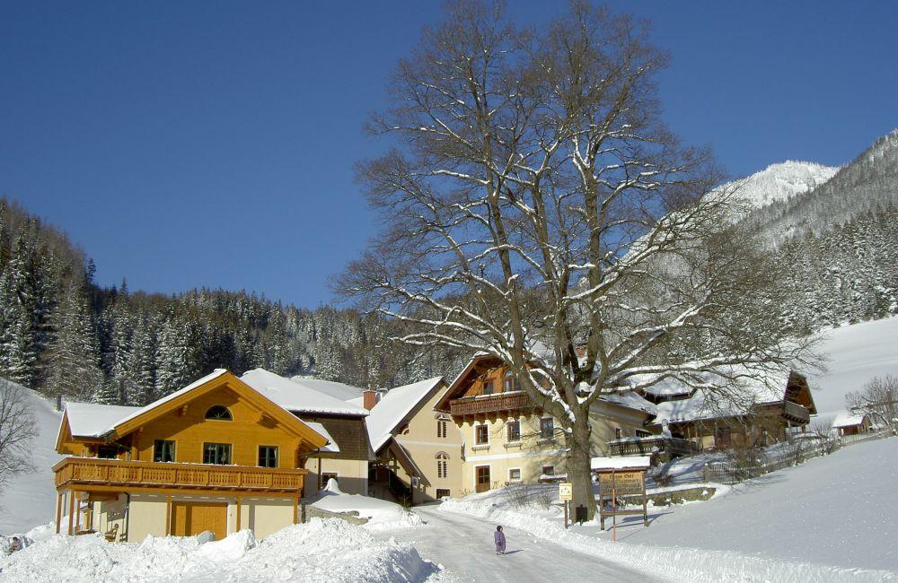Michlbauer Im Winter