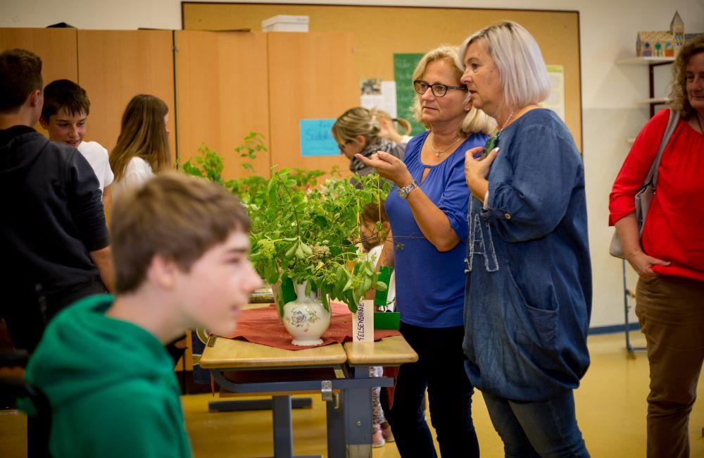 Naturpark Schulen 8 (c) Nixxpixx.com