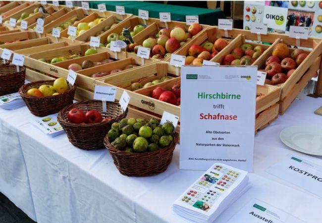 Streuobstausstellung in Graz