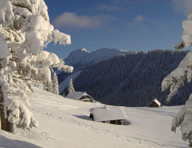 Schneeschuhwanderung am Mariazellerweg