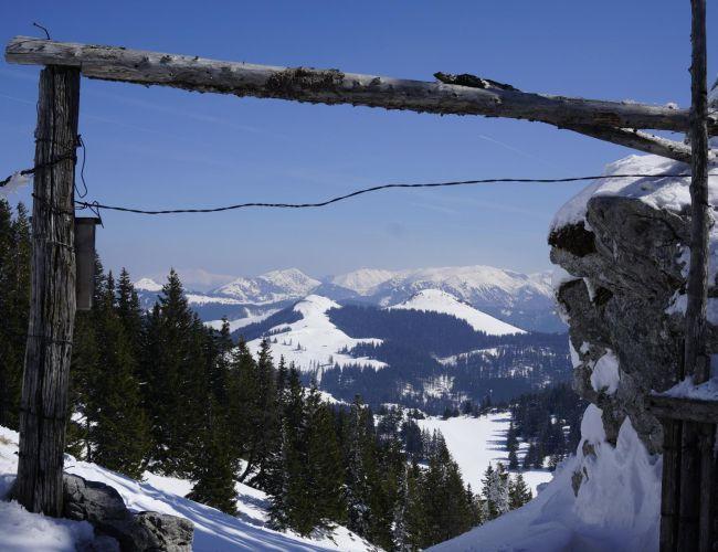 Schneeschuhwanderung auf Lachalm und Blahstein