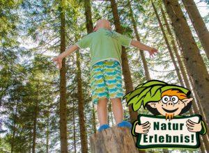 Spiel und Spaß im Wald (c) nixxipixx.com